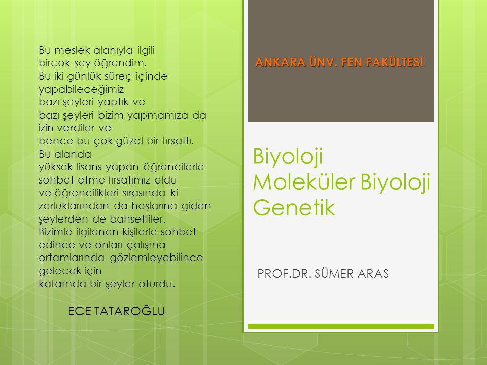 Biyoloji Moleküler Biyoloji Genetik
