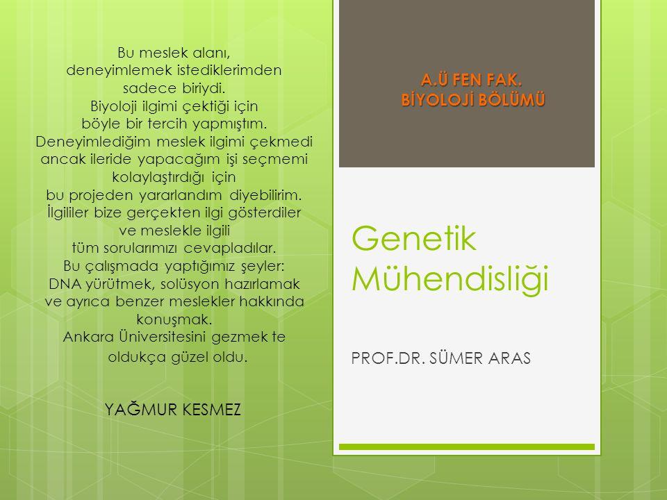 Genetik Mühendisliği A.Ü FEN FAK. BİYOLOJİ BÖLÜMÜ PROF.DR. SÜMER ARAS