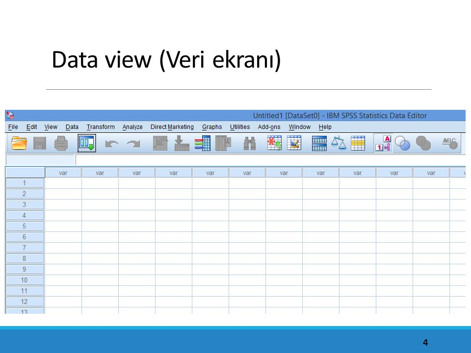 Data view (Veri ekranı)