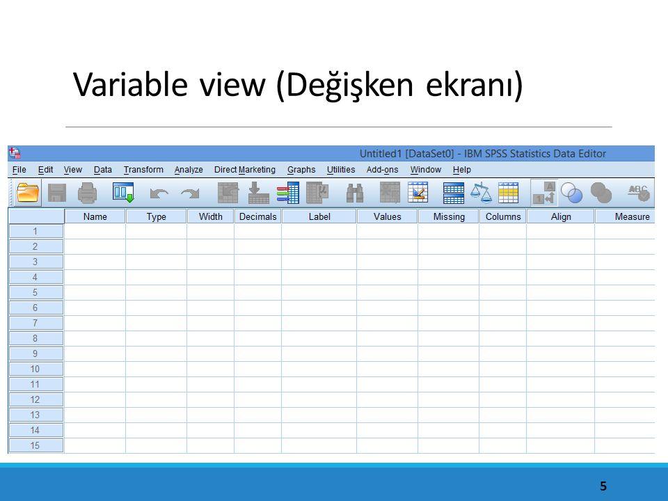 Variable view (Değişken ekranı)