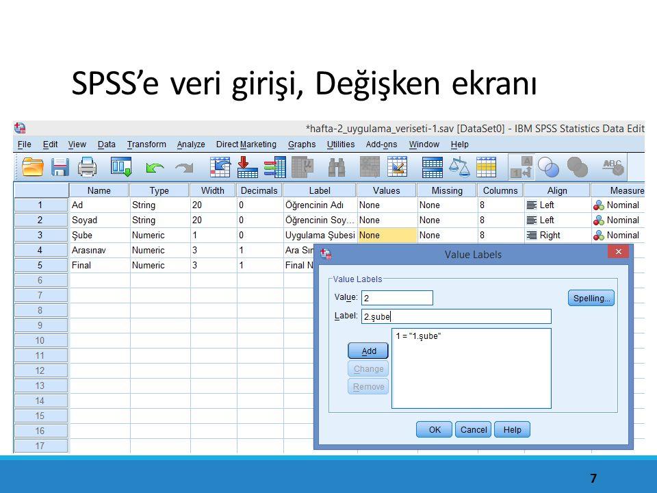 SPSS'e veri girişi, Değişken ekranı