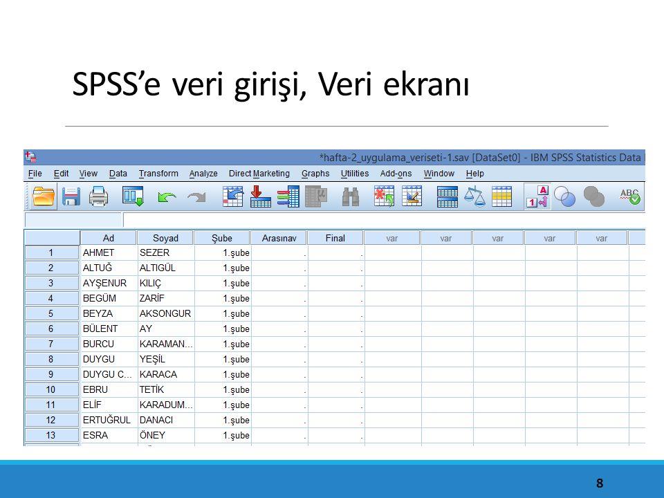 SPSS'e veri girişi, Veri ekranı
