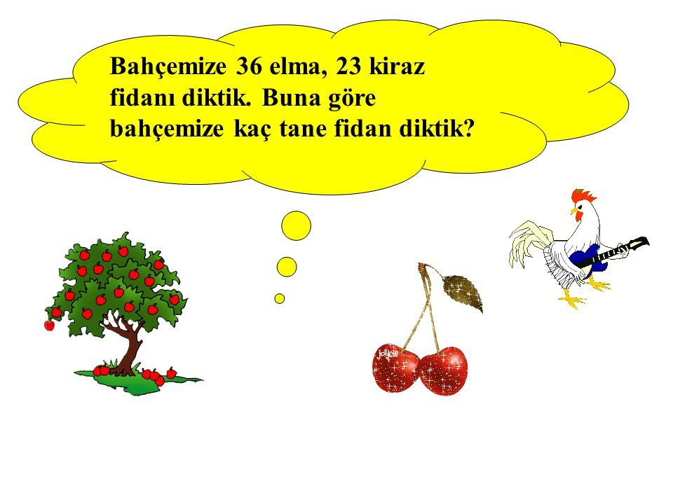 Bahçemize 36 elma, 23 kiraz fidanı diktik