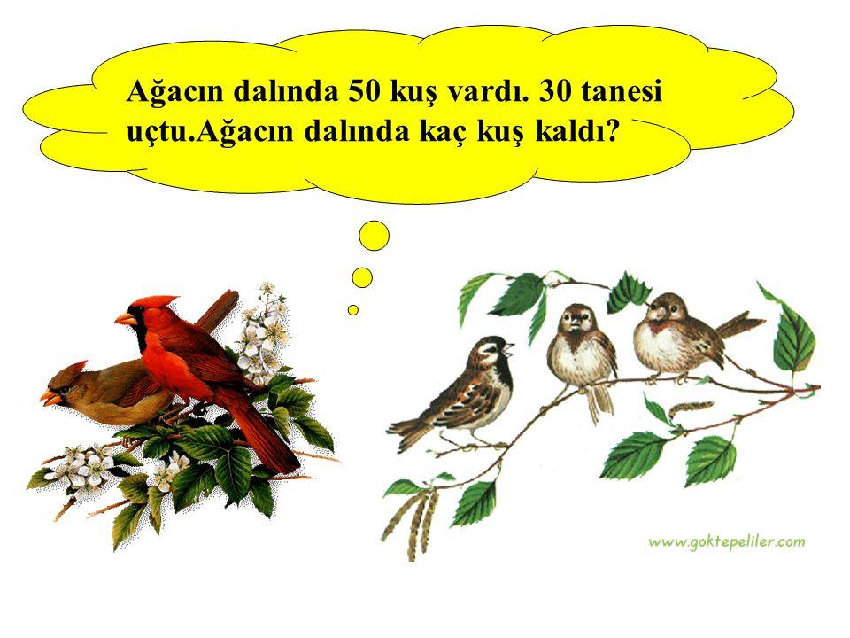 Ağacın dalında 50 kuş vardı. 30 tanesi uçtu