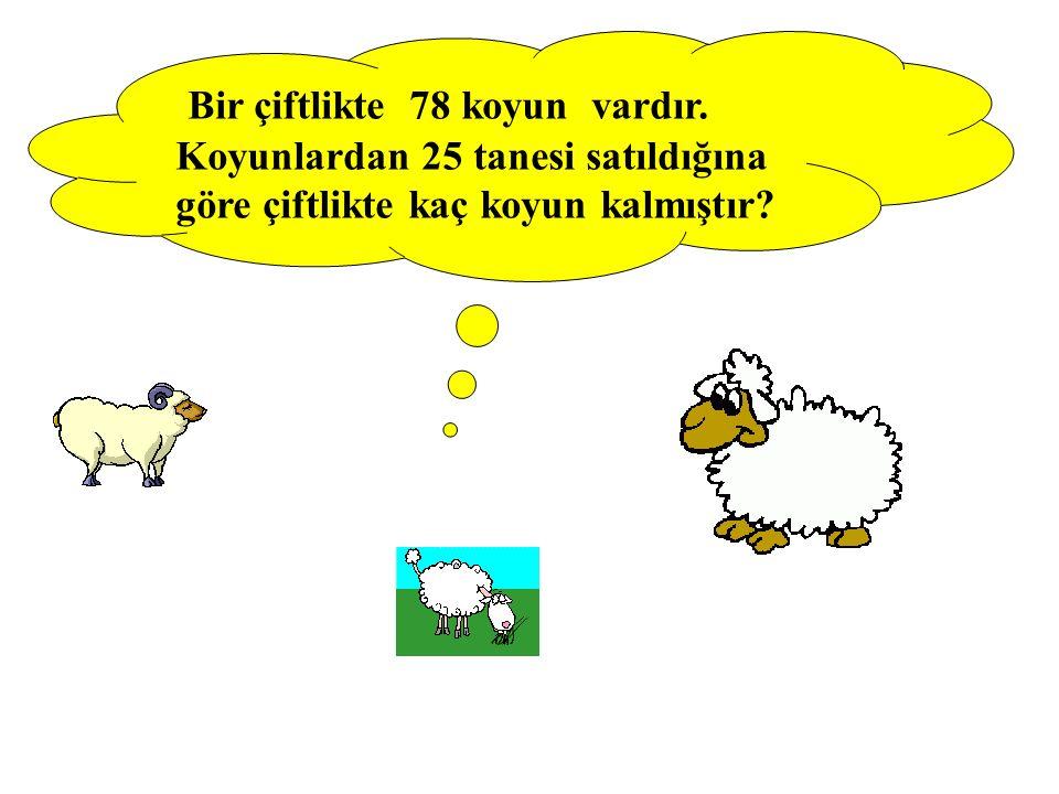 Bir çiftlikte 78 koyun vardır