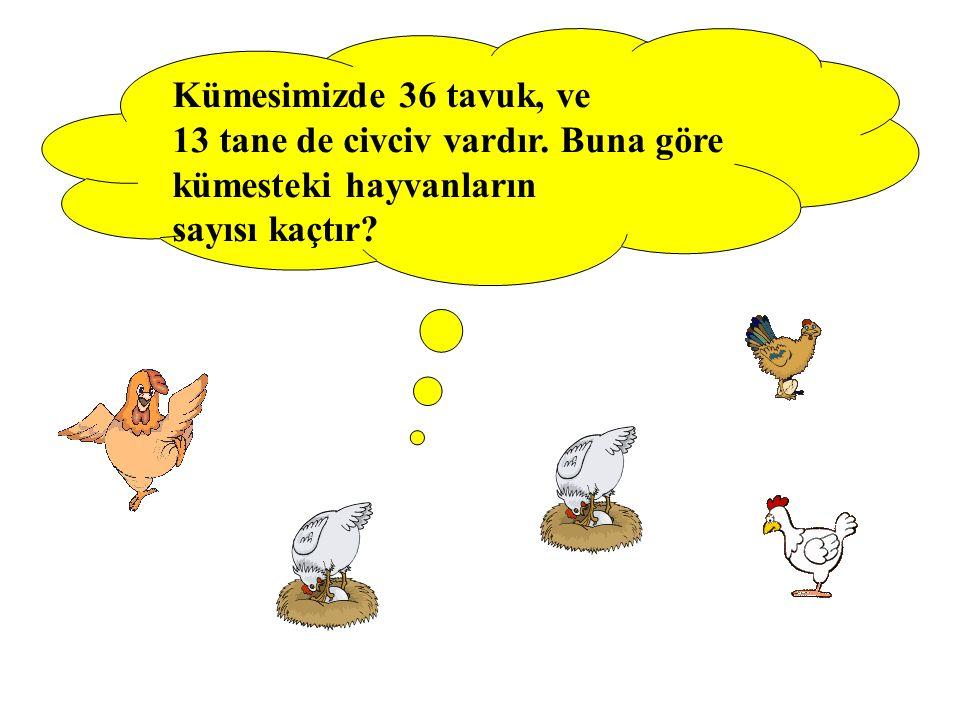 Kümesimizde 36 tavuk, ve 13 tane de civciv vardır. Buna göre kümesteki hayvanların sayısı kaçtır
