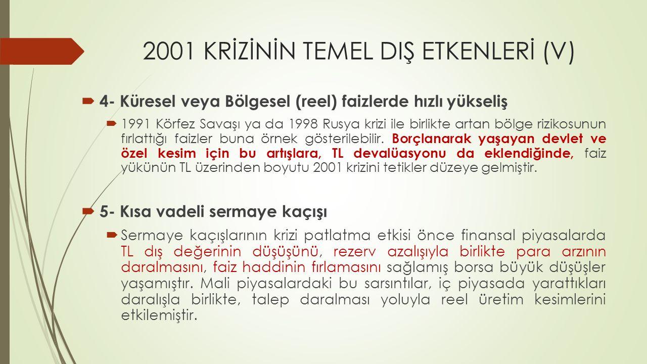 2001 KRİZİNİN TEMEL DIŞ ETKENLERİ (V)