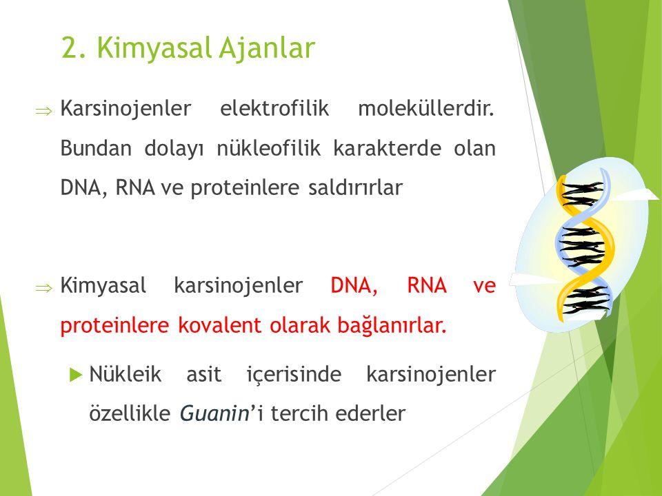 2. Kimyasal Ajanlar Karsinojenler elektrofilik moleküllerdir. Bundan dolayı nükleofilik karakterde olan DNA, RNA ve proteinlere saldırırlar.