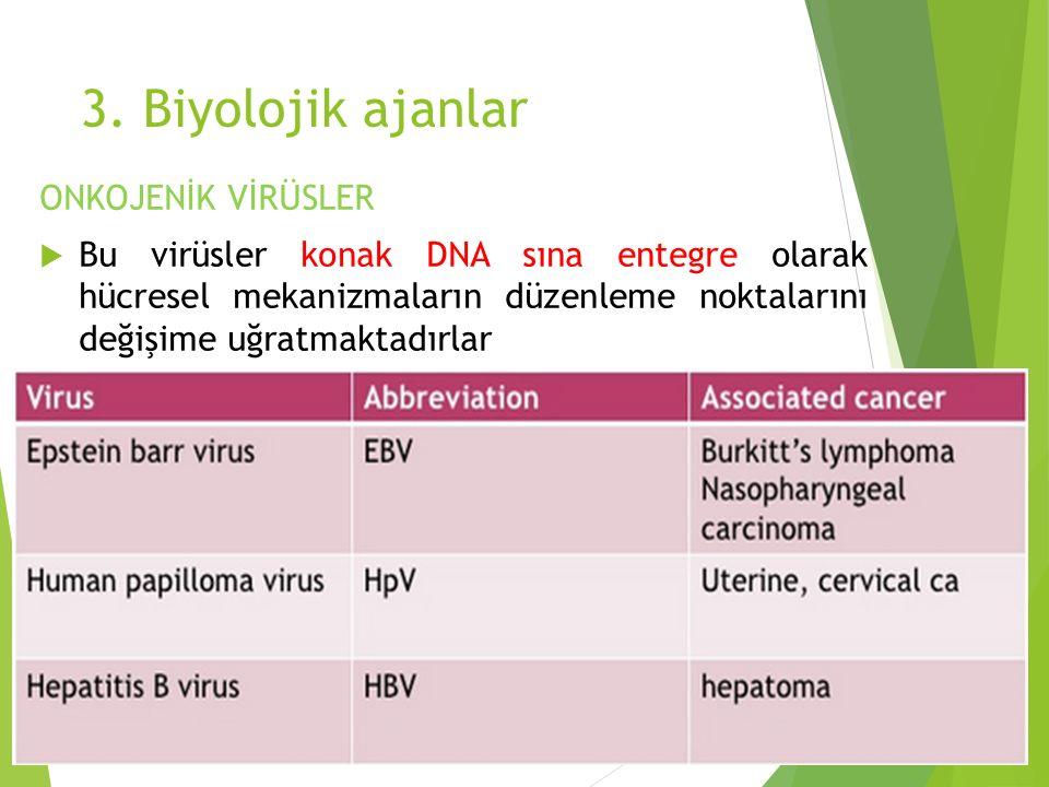 3. Biyolojik ajanlar ONKOJENİK VİRÜSLER