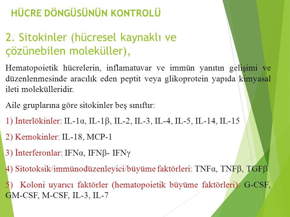 2. Sitokinler (hücresel kaynaklı ve çözünebilen moleküller),