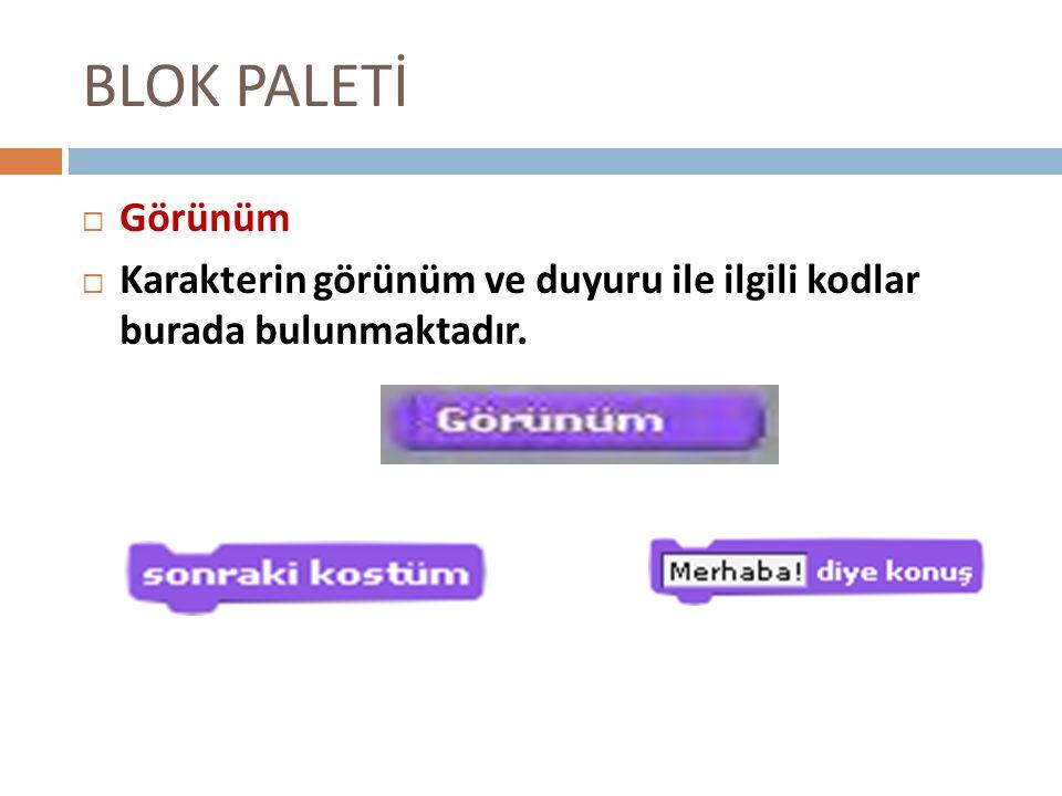 BLOK PALETİ Görünüm Karakterin görünüm ve duyuru ile ilgili kodlar burada bulunmaktadır.