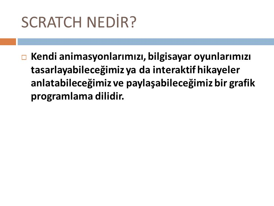 SCRATCH NEDİR
