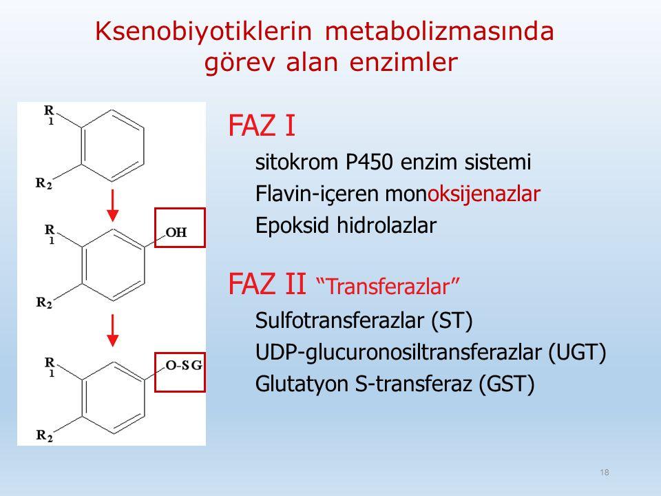 Ksenobiyotiklerin metabolizmasında