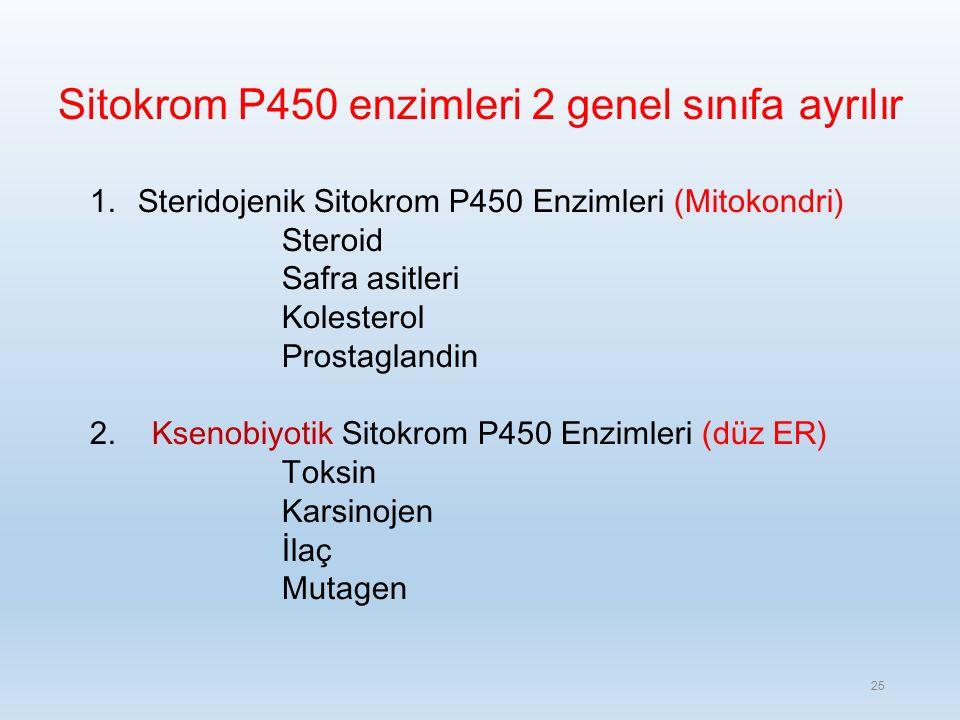 Sitokrom P450 enzimleri 2 genel sınıfa ayrılır