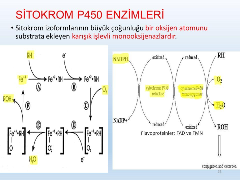 SİTOKROM P450 ENZİMLERİ Sitokrom izoformlarının büyük çoğunluğu bir oksijen atomunu substrata ekleyen karışık işlevli monooksijenazlardır.
