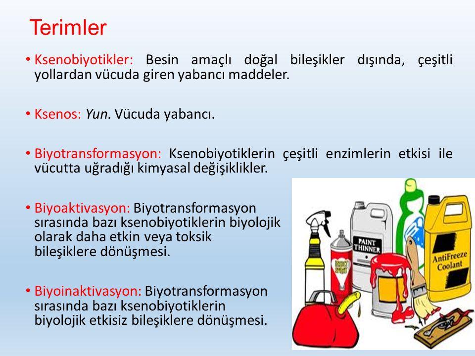 Terimler Ksenobiyotikler: Besin amaçlı doğal bileşikler dışında, çeşitli yollardan vücuda giren yabancı maddeler.
