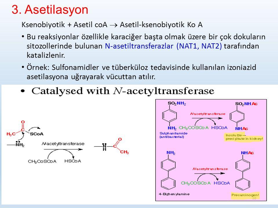 3. Asetilasyon Ksenobiyotik + Asetil coA  Asetil-ksenobiyotik Ko A