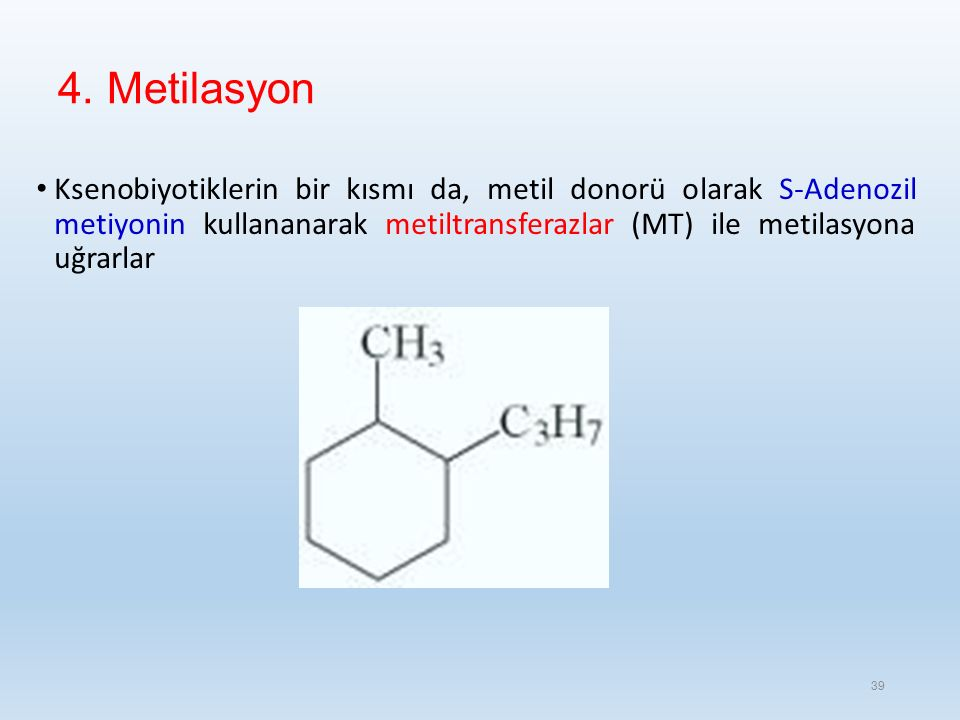 4. Metilasyon