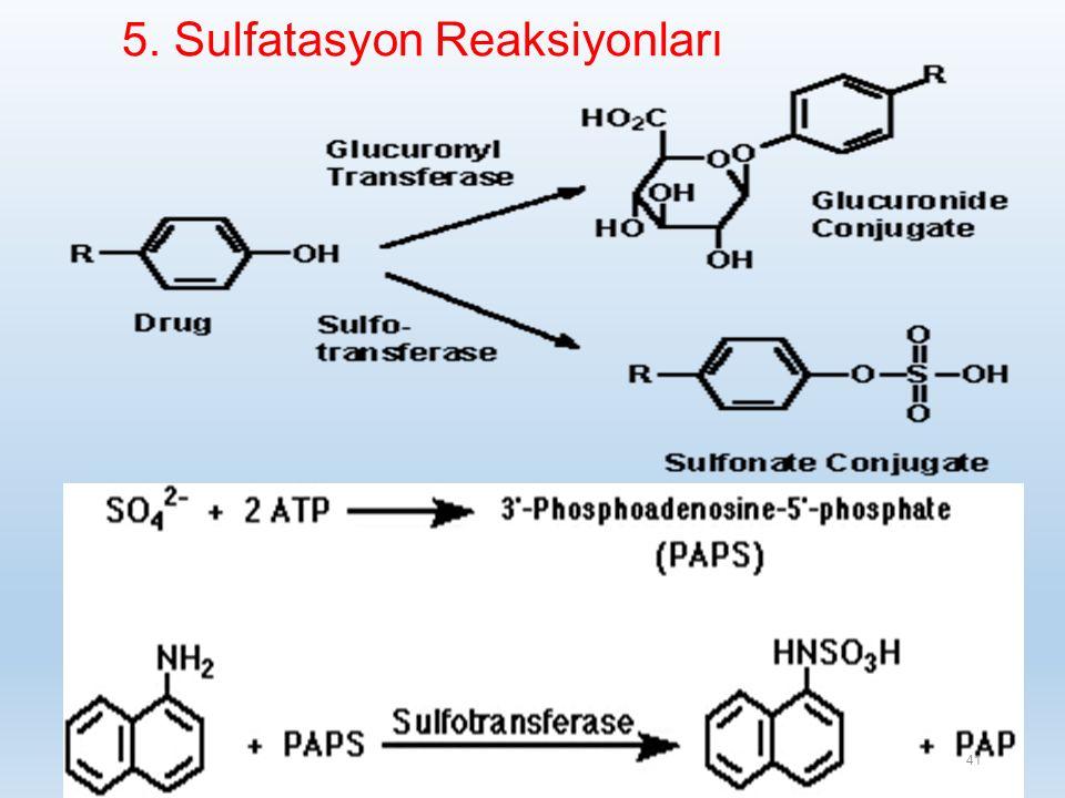 5. Sulfatasyon Reaksiyonları