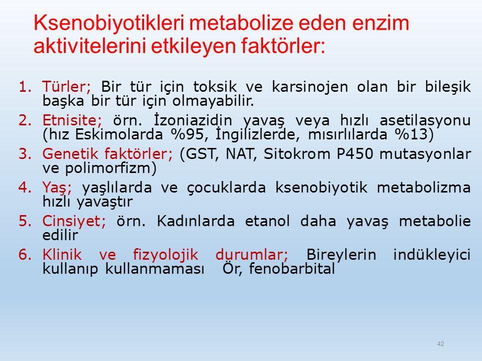 Ksenobiyotikleri metabolize eden enzim aktivitelerini etkileyen faktörler: