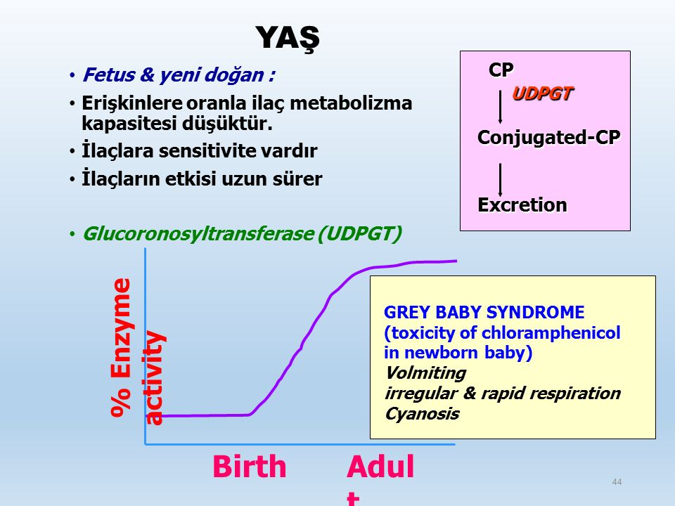 YAŞ Birth Adult % Enzyme activity CP Fetus & yeni doğan : UDPGT