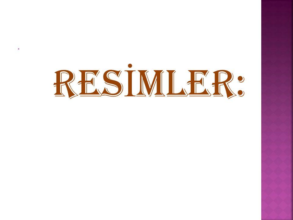 RESİMLER: