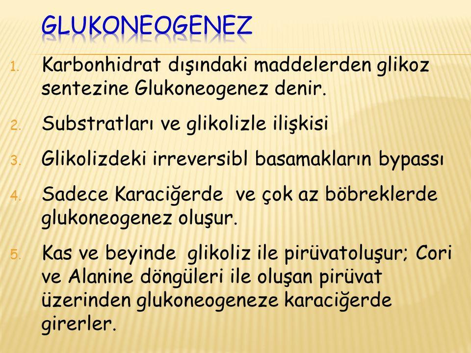 Glukoneogenez Karbonhidrat dışındaki maddelerden glikoz sentezine Glukoneogenez denir. Substratları ve glikolizle ilişkisi.
