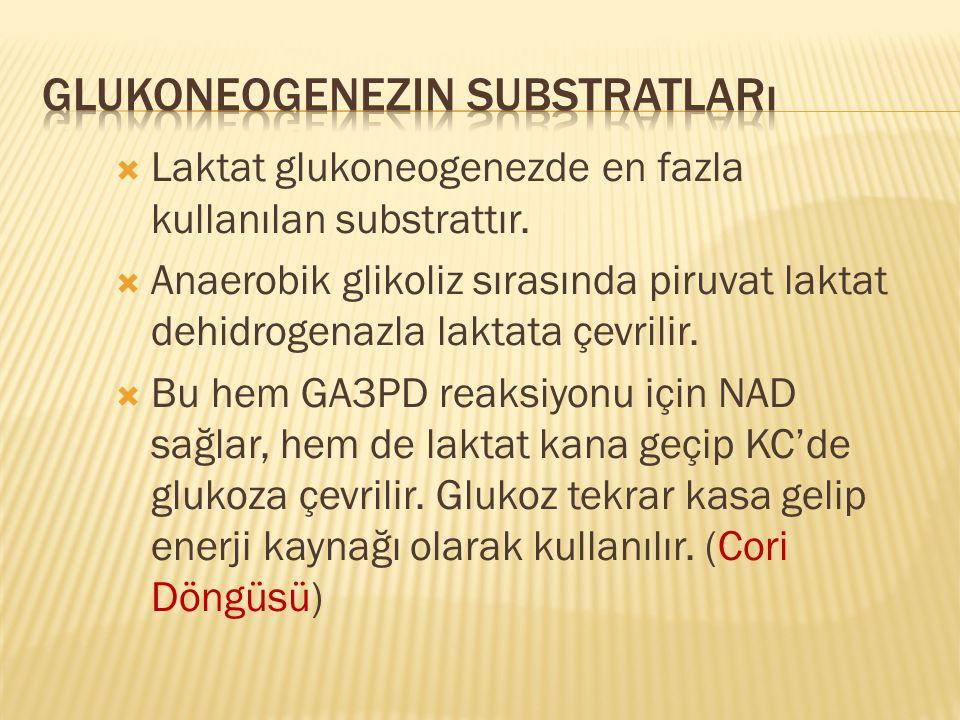 Glukoneogenezin Substratları