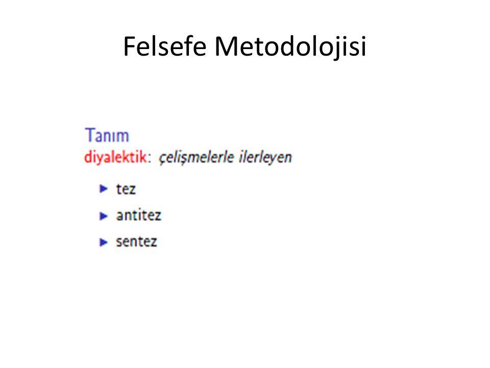 Felsefe Metodolojisi