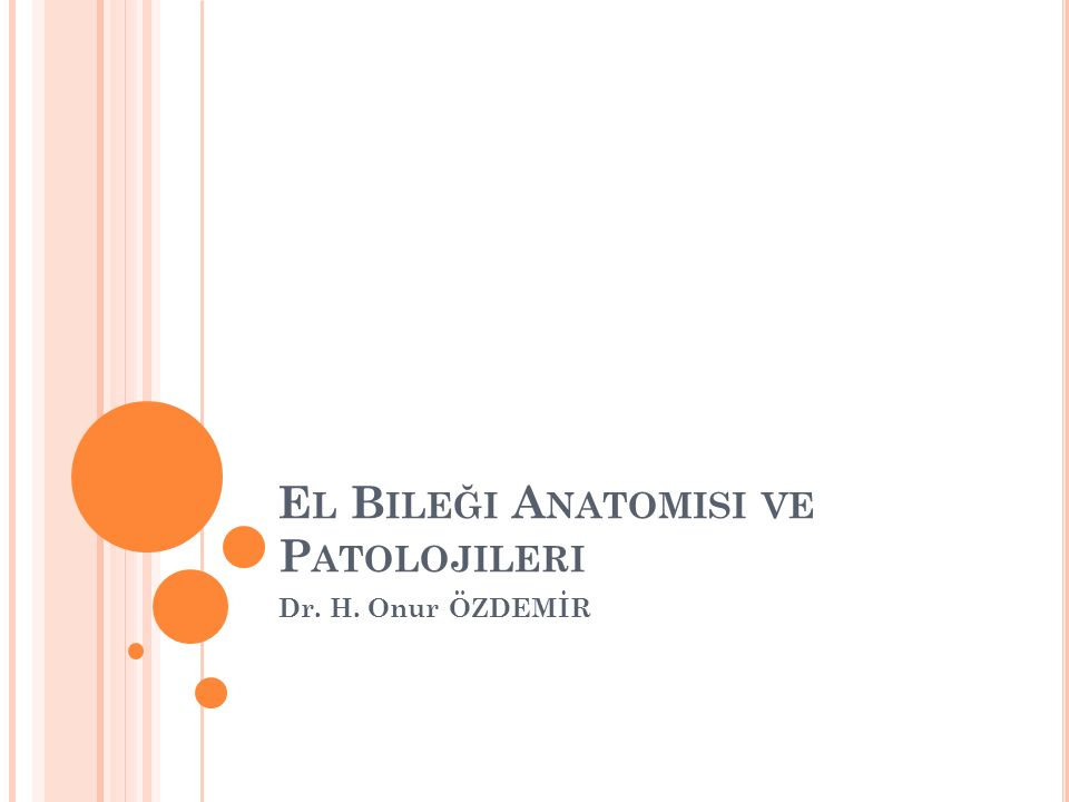 El Bileği Anatomisi ve Patolojileri