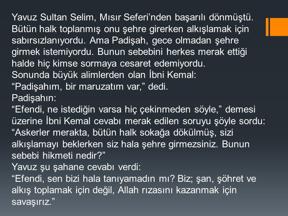 Yavuz Sultan Selim, Mısır Seferi'nden başarılı dönmüştü