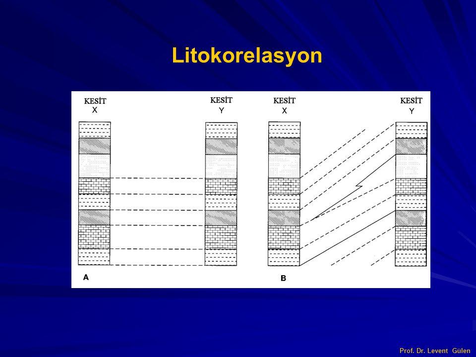 Litokorelasyon Prof. Dr. Levent Gülen