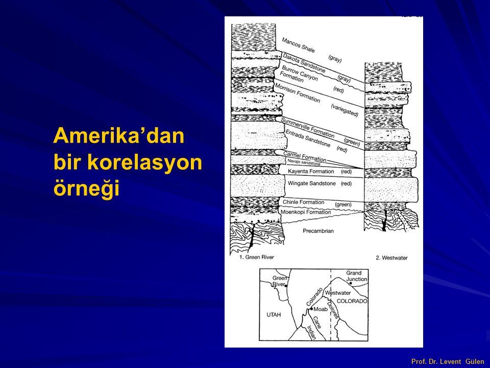 Amerika'dan bir korelasyon örneği Prof. Dr. Levent Gülen