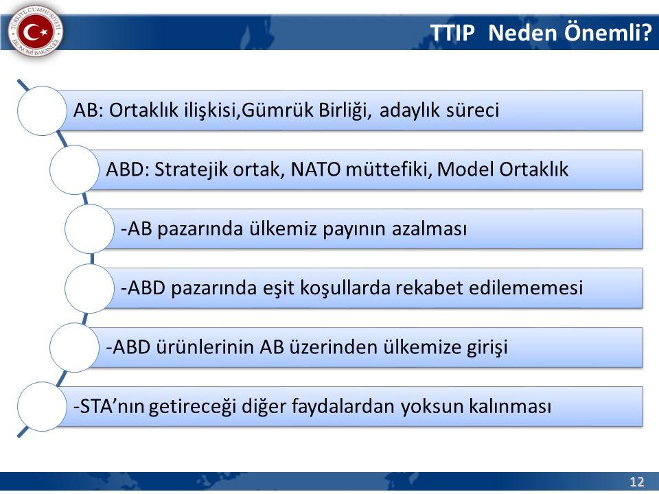 Türkiye-ABD STA/Girişimler ve Çalışmalar