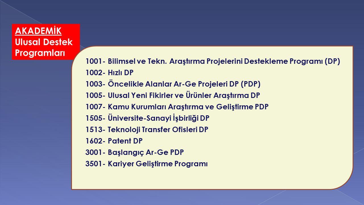 AKADEMİK Ulusal Destek Programları
