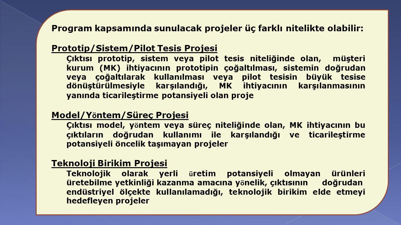 Program kapsamında sunulacak projeler üç farklı nitelikte olabilir: