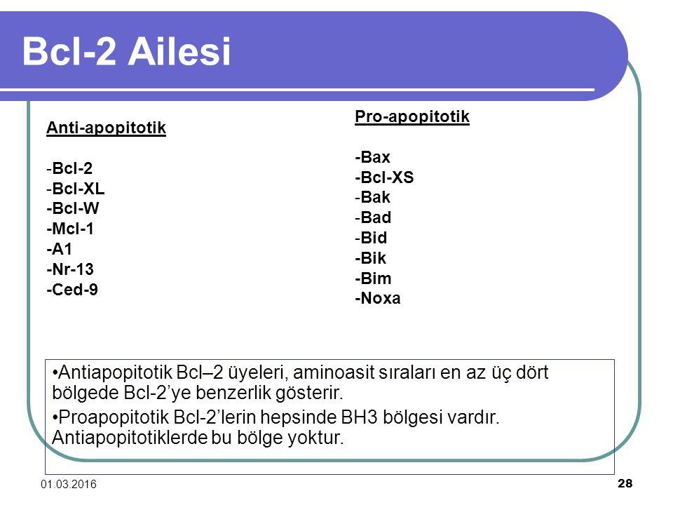 Bcl-2 Ailesi Pro-apopitotik. -Bax. -Bcl-XS. -Bak. -Bad. -Bid. -Bik. -Bim. -Noxa. Anti-apopitotik.