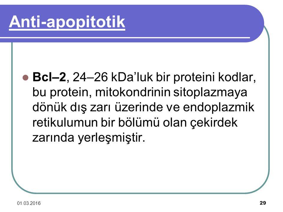 Anti-apopitotik