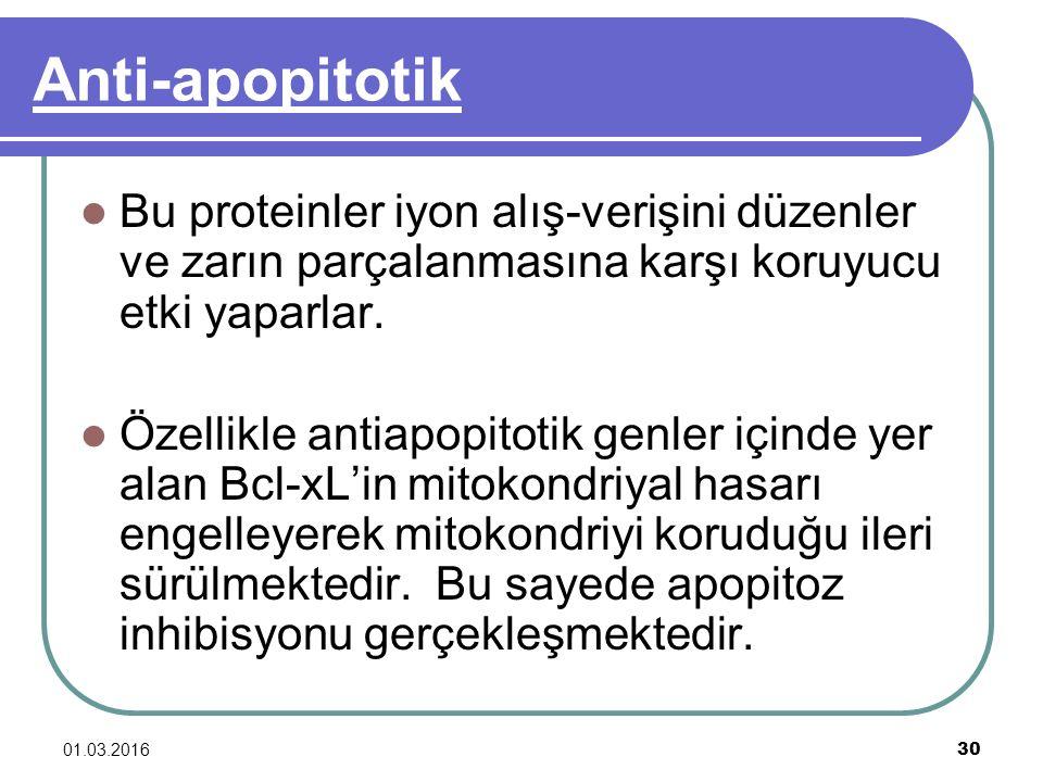 Anti-apopitotik Bu proteinler iyon alış-verişini düzenler ve zarın parçalanmasına karşı koruyucu etki yaparlar.