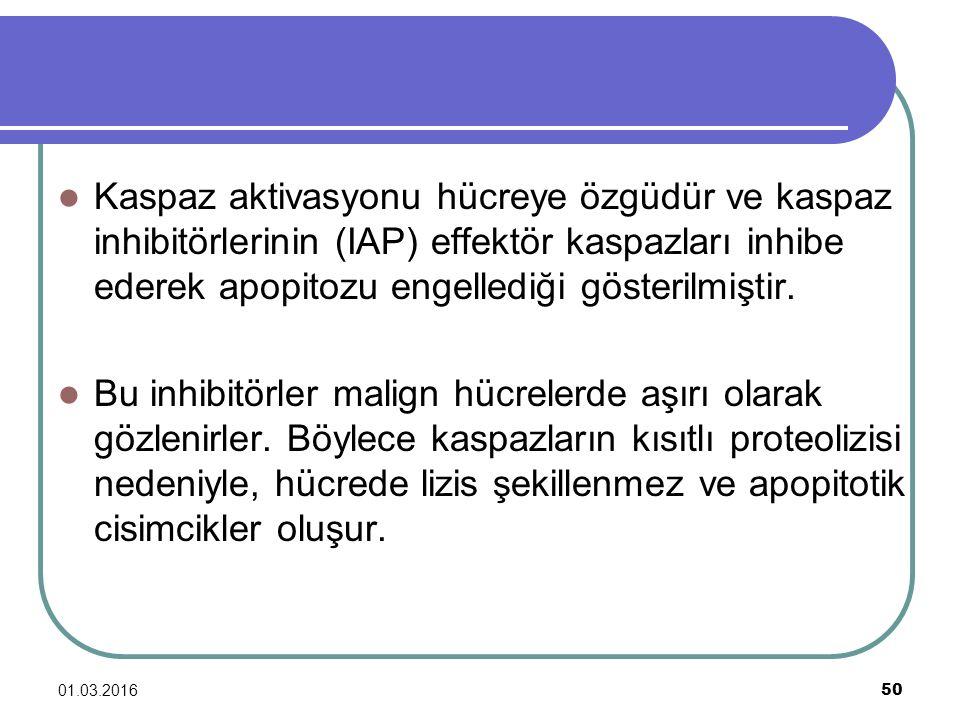 Kaspaz aktivasyonu hücreye özgüdür ve kaspaz inhibitörlerinin (IAP) effektör kaspazları inhibe ederek apopitozu engellediği gösterilmiştir.