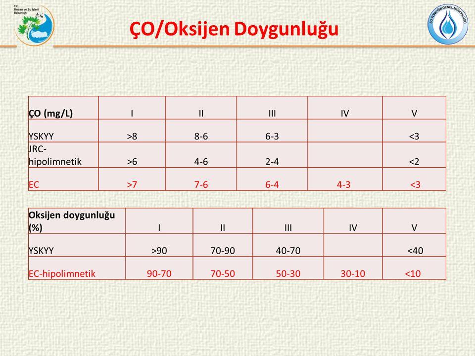 ÇO/Oksijen Doygunluğu