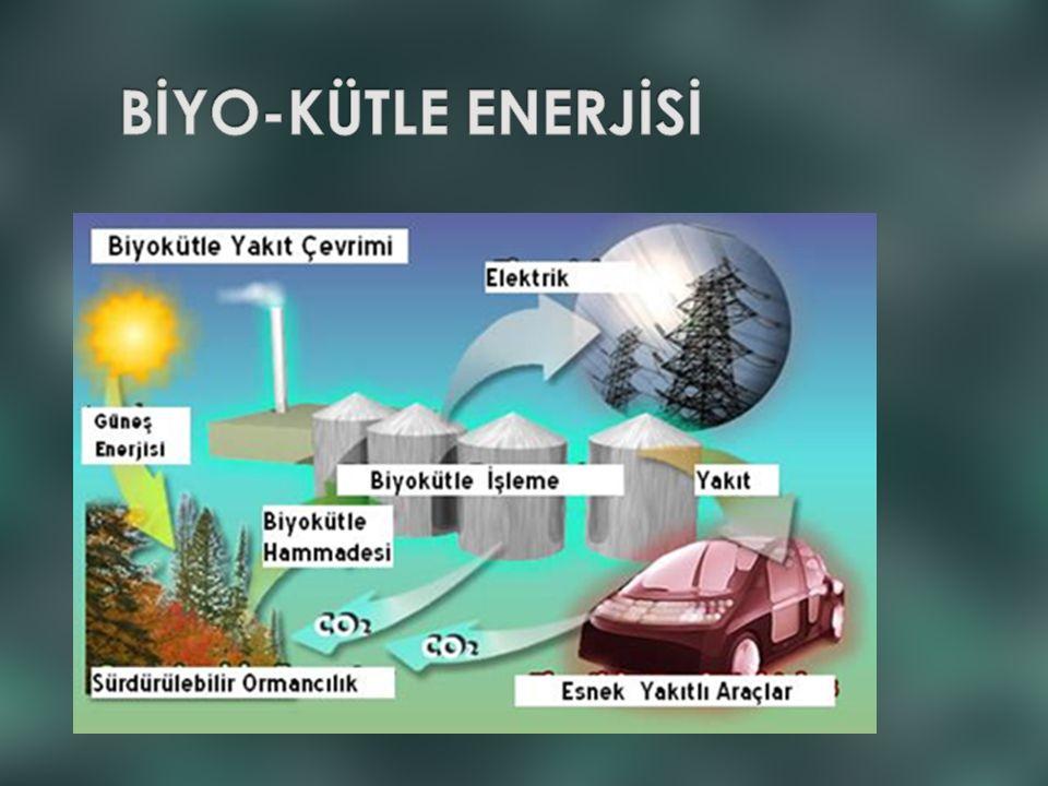 BİYO-KÜTLE ENERJİSİ