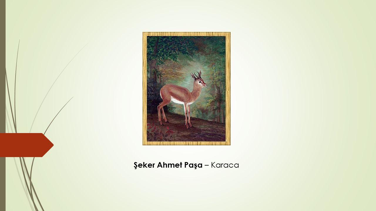 Şeker Ahmet Paşa – Karaca