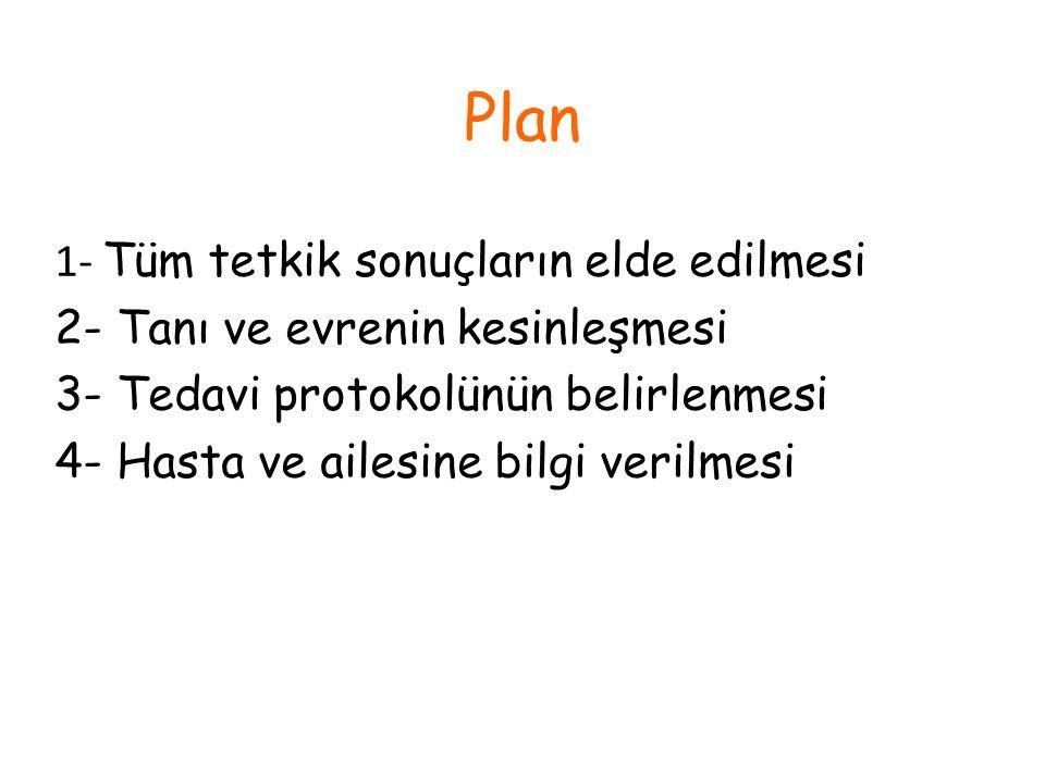 Plan 1- Tüm tetkik sonuçların elde edilmesi