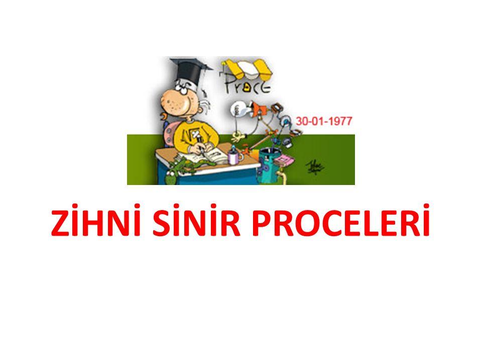 ZİHNİ SİNİR PROCELERİ