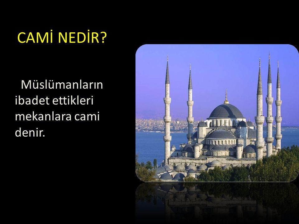 CAMİ NEDİR Müslümanların ibadet ettikleri mekanlara cami denir.