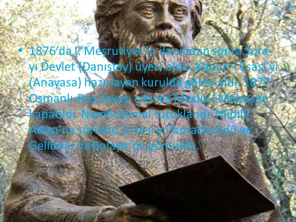 1876'da I. Meşrutiyet'in ilanından sonra Şura-yı Devlet (Danıştay) üyesi oldu.