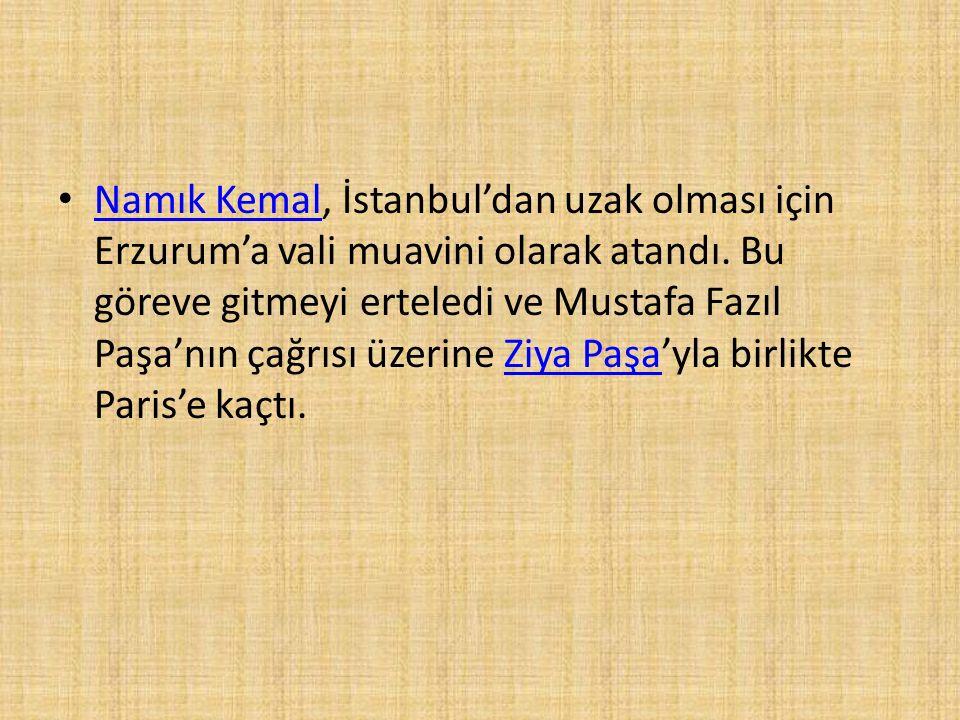 Namık Kemal, İstanbul'dan uzak olması için Erzurum'a vali muavini olarak atandı.