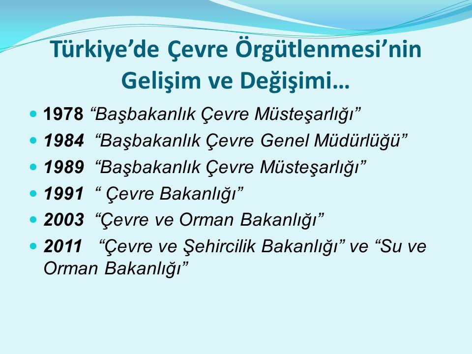 Türkiye'de Çevre Örgütlenmesi'nin Gelişim ve Değişimi…