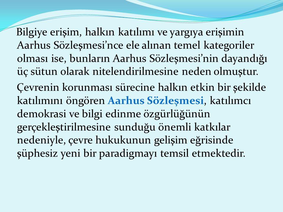Bilgiye erişim, halkın katılımı ve yargıya erişimin Aarhus Sözleşmesi'nce ele alınan temel kategoriler olması ise, bunların Aarhus Sözleşmesi'nin dayandığı üç sütun olarak nitelendirilmesine neden olmuştur.